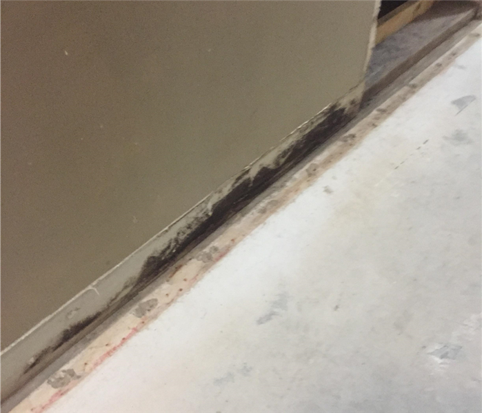 Mold Underneath Baseboards