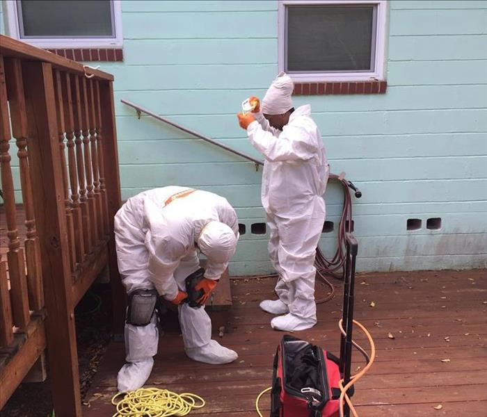 Mold Remediation Crawl Space Mold Remediation and Restoration in St. Augustine.