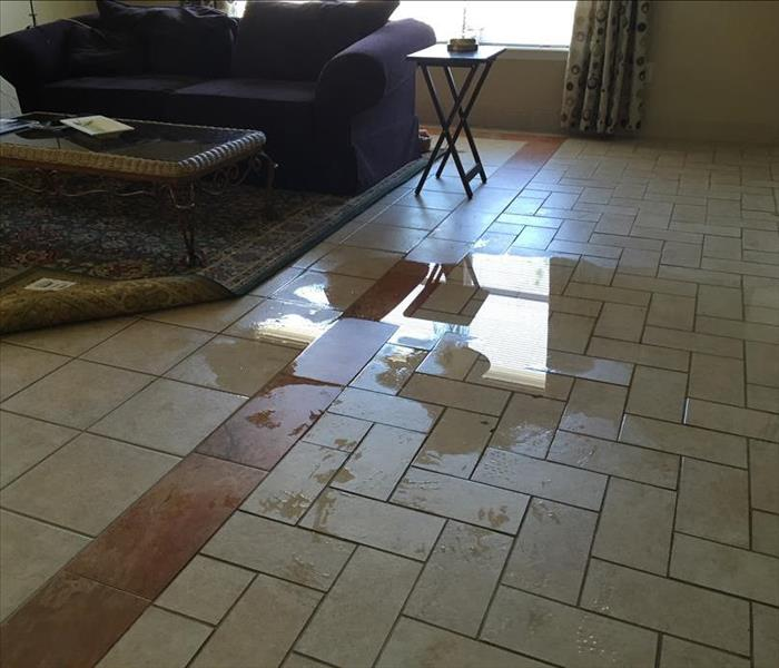 Water Damage Super Bowl is fun and games, until you discover Water Damage - SERVPRO in St. Augustine is quick to react!