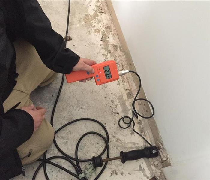 Water Damage Using a Hammer Probe in Water Damage Restoration by SERVPRO in St Augustine