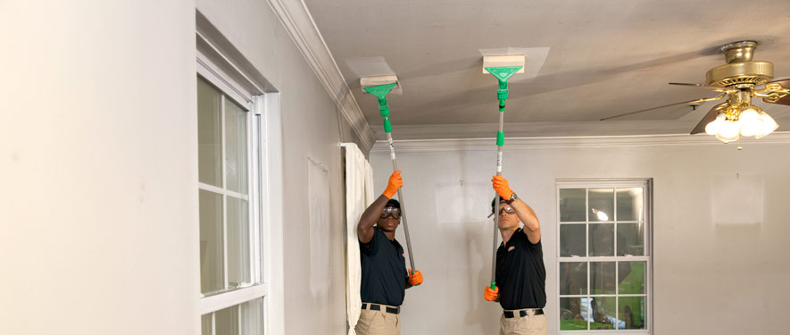 Emergency cleaning services--St. Augustine, FL